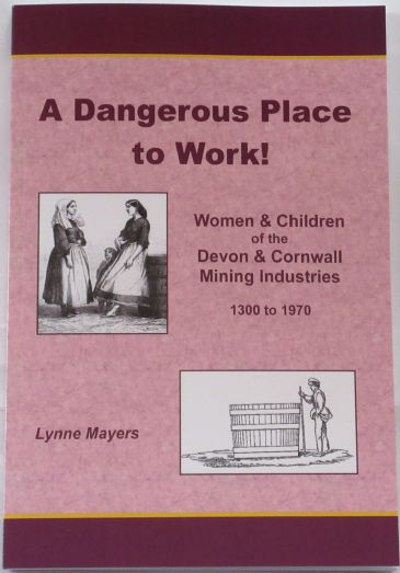 A Dangerous Place to Work, by Lynne Mayers